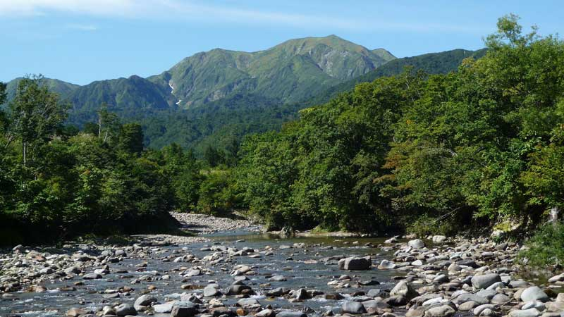 銀山平・石抱橋からの越後駒ヶ岳