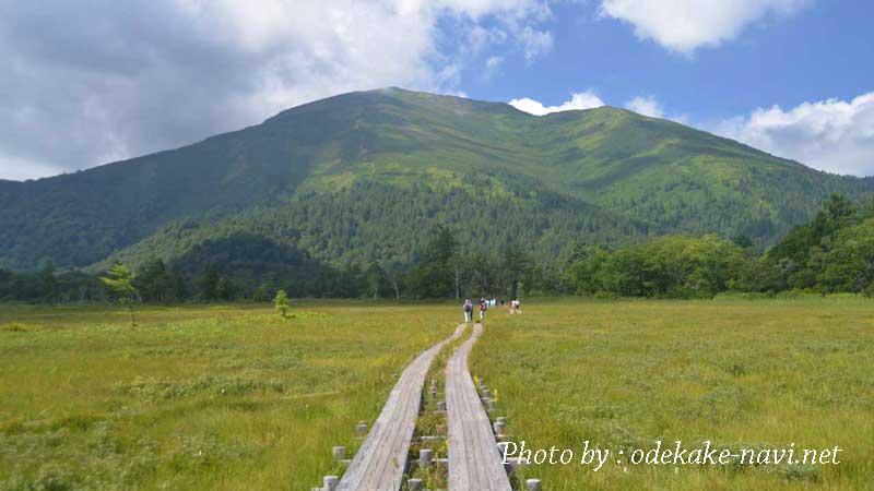 尾瀬ヶ原・山の鼻からの至仏山