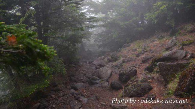 雨の男体山登山道