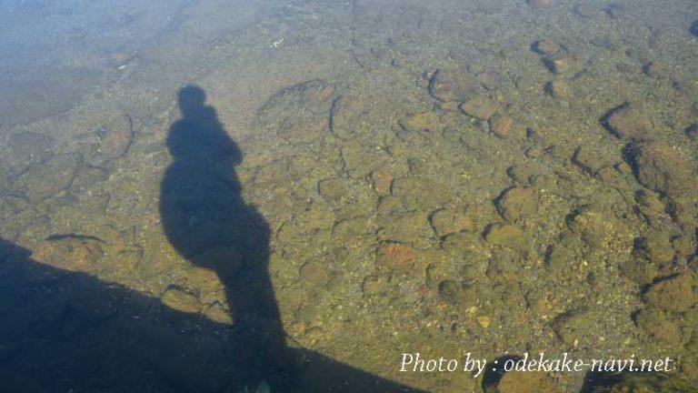 屈斜路湖の湖水に写るカメラマン