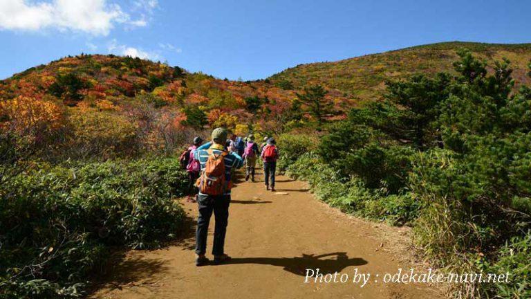 紅葉の安達太良山登山道