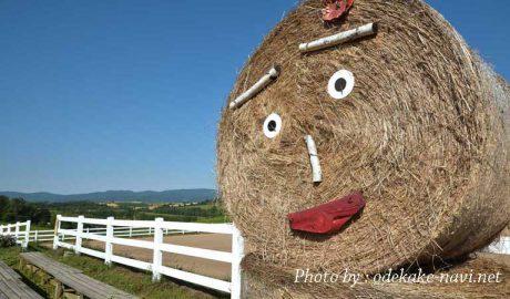 美瑛の牧草ロール