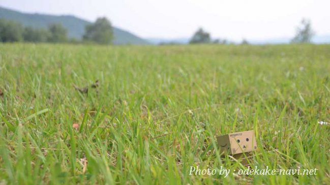 草原とダンボー