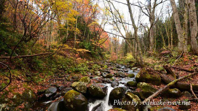 紅葉の武尊山・裏見の滝散策路