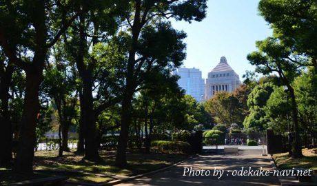 国会前庭からの国会議事堂