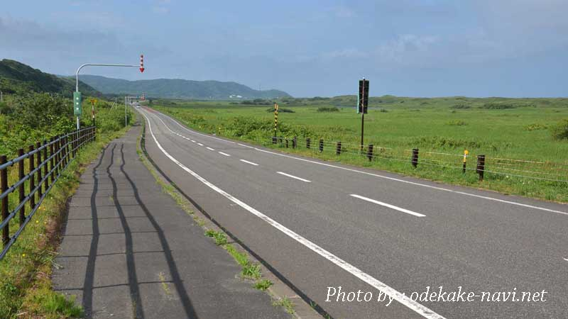 サロベツ原野の道路