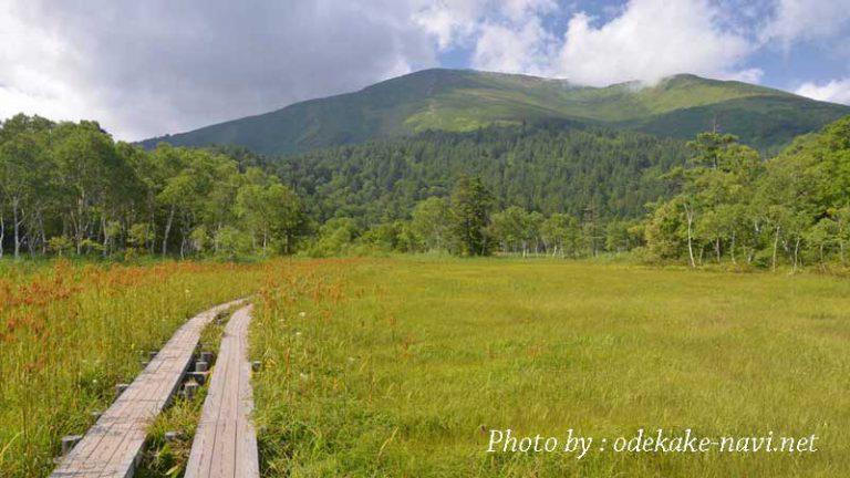 尾瀬ヶ原の木道と至仏山
