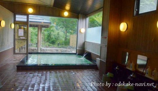 白神山地のアクアグリーンビレッジANMONのお風呂
