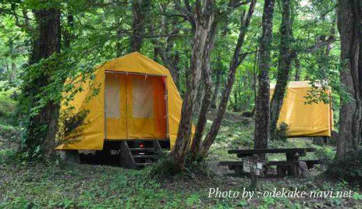 大山下山キャンプ場の設営テント