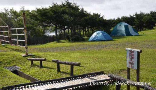 稚内公園の稚内森林公園キャンプ場